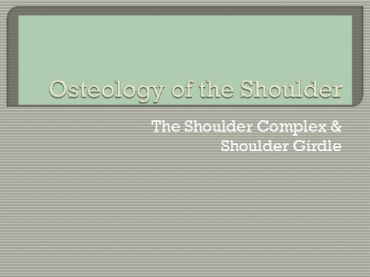The Shoulder Complex &