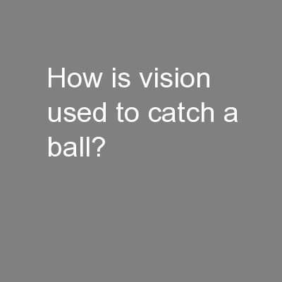 How is vision used to catch a ball?