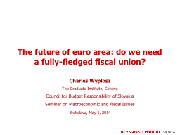 The future of euro area: do we need a fully-fledged fiscal