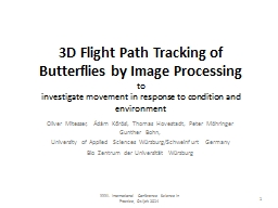 3D Flight Path Tracking of Butterflies by Image