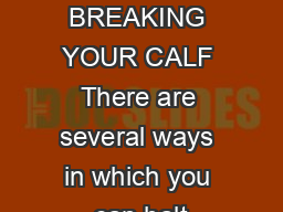 HALTER BREAKING YOUR CALF There are several ways in which you can halt