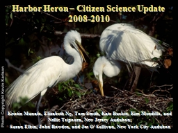 Harbor Heron – Citizen Science Update