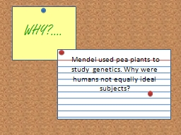 WHY?.... PowerPoint PPT Presentation