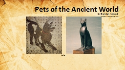 Pets of the Ancient World