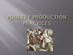 Poultry Production Practices