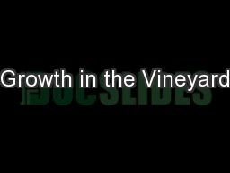 Growth in the Vineyard