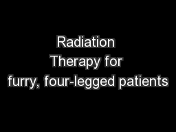 Radiation Therapy for furry, four-legged patients