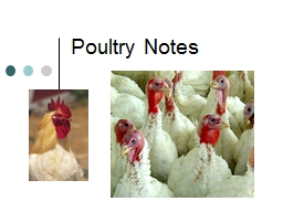 Poultry Notes