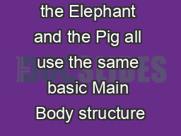 The Bunny the Elephant and the Pig all use the same basic Main Body structure