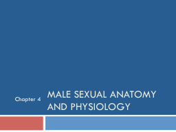 Male Sexual Anatomy and Physiology
