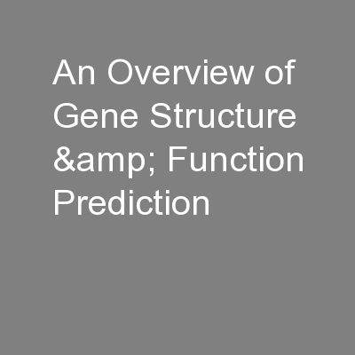 An Overview of Gene Structure & Function Prediction