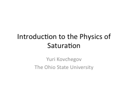 Introduction to the Physics of Saturation