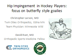 Hip Impingement in Hockey Players: focus on butterfly style