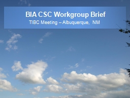 BIA CSC Workgroup Brief