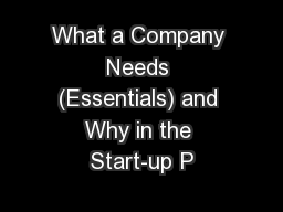 What a Company Needs (Essentials) and Why in the Start-up P