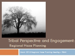 Tribal Perspective and Engagement: