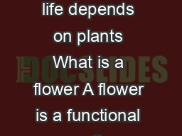 Flower structure and variations All life depends on plants What is a flower A flower is a functional unit concerned with sexual reproduction PDF document - DocSlides