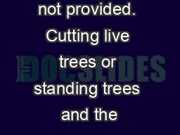 Firewood is not provided. Cutting live trees or standing trees and the