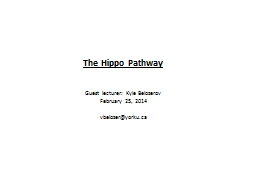 The Hippo Pathway PowerPoint PPT Presentation