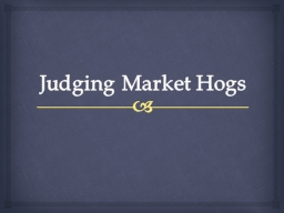 Judging Market Hogs