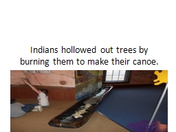 Indians hollowed out trees by burning them to make their ca