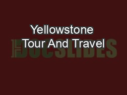 Yellowstone Tour And Travel