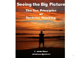 Seeing the Big Picture PowerPoint PPT Presentation