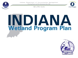 The Need for a Wetland Program Plan