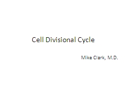 Cell Divisional Cycle PowerPoint PPT Presentation