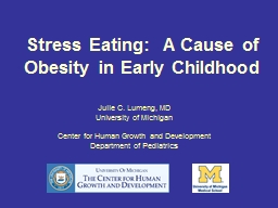 Stress Eating:  A Cause of