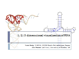 1/2/3 dimensional visualization of RNA PowerPoint PPT Presentation