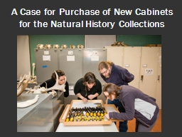 A Case for Purchase of New Cabinets for the Natural History PowerPoint PPT Presentation