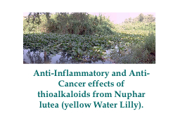 Anti-Inflammatory and Anti-Cancer effects of thioalkaloids