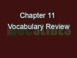 Chapter 11 Vocabulary Review