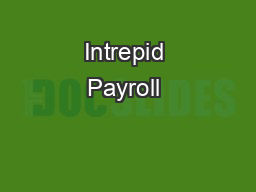 Intrepid Payroll & Backup