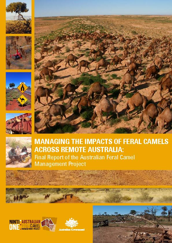 MANAGING THE IMPACTS OF FERAL CAMELS