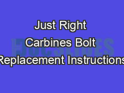 Just Right Carbines Bolt Replacement Instructions