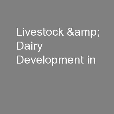 Livestock & Dairy Development in