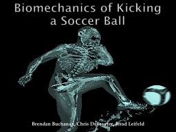 Biomechanics of Kicking a Soccer Ball