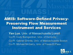 AMIS: Software-Defined Privacy-Preserving Flow Measurement