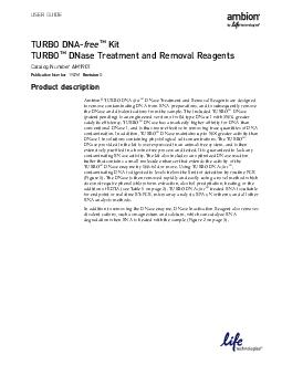 USER GUIDE TURBO DNA free Kit TURBO DNase Treatment and Removal Reagents Catalog Number AM Publication Number M Revision G Product description  TURBO DNAfree Kit User Guide Product description Figure