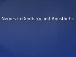 Nerves in Dentistry and Anesthetic