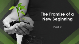 The Promise of a New Beginning