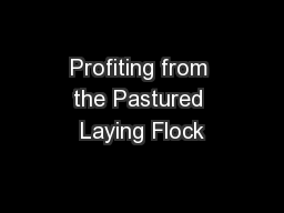 Profiting from the Pastured Laying Flock PowerPoint PPT Presentation