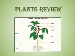 PLANTS REVIEW