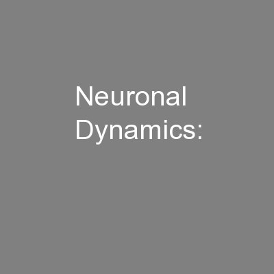 Neuronal Dynamics: PowerPoint PPT Presentation