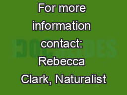 For more information contact: Rebecca Clark, Naturalist