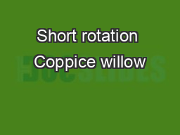 Short rotation Coppice willow