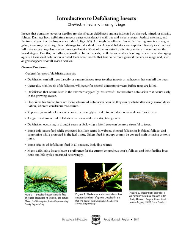 Introduction to defoliating insects