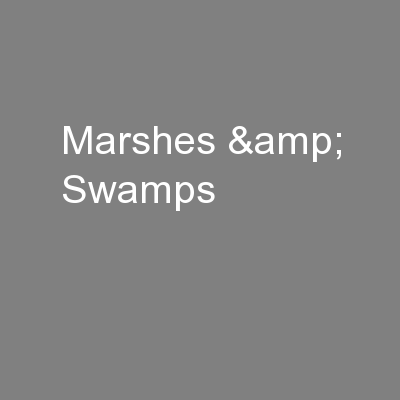 Marshes & Swamps PowerPoint PPT Presentation